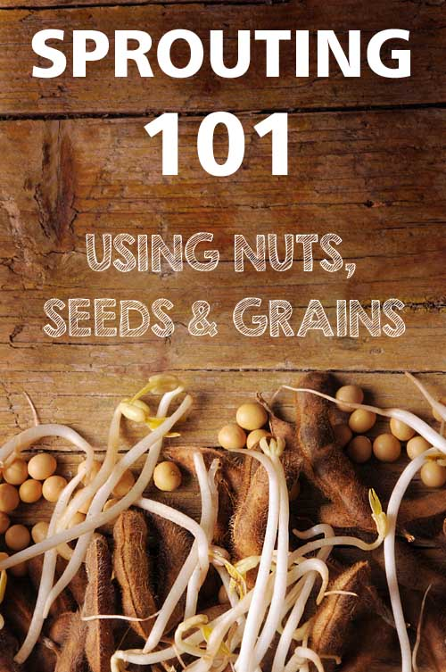 Sprouting 101 - Using Nuts, Seeds & Grains | Foodal.com