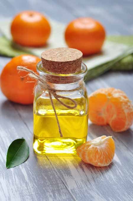 Tangerine - Cooking With Essential Oils | Foodal.com