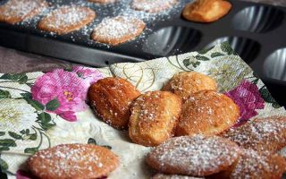 Homemade Madeleine Cookie Recipe | Foodal.com