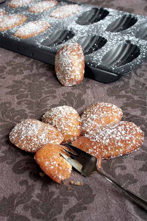 Proust's madeleines aren't out of reach! Learn how to make them at home: https://foodal.com/recipes/desserts/madeleines-the-aristocrat-of-cookies/