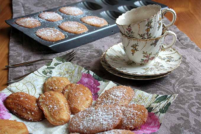 Make Madeleines at Home | Foodal.com