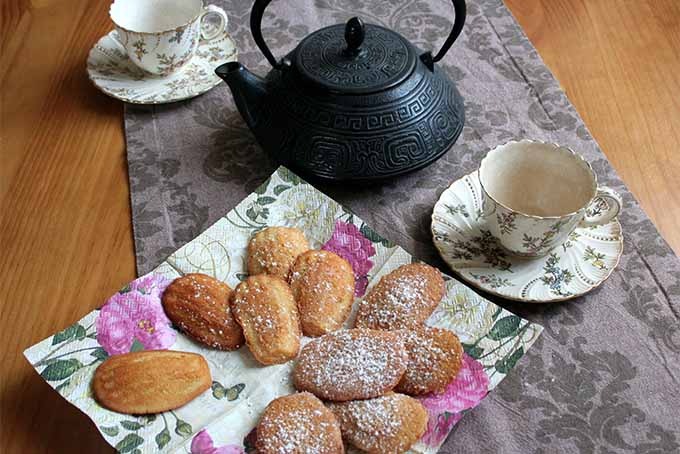 Madeleines with Tea | Foodal.com