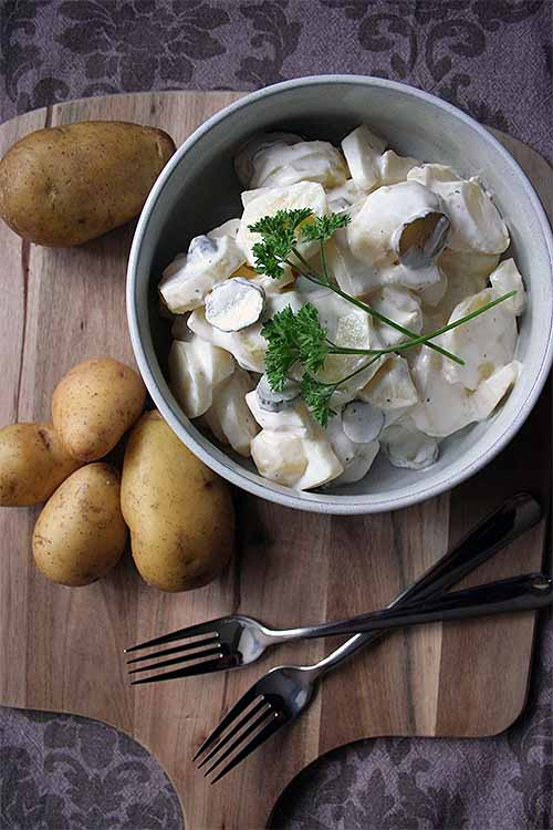 You'll love this combination of perfectly cooked potatoes, fresh herbs, gherkins, and a tangy yogurt-mayo dressing. Get the recipe: http://foodal.com/recipes/sides/german-potato-salad/