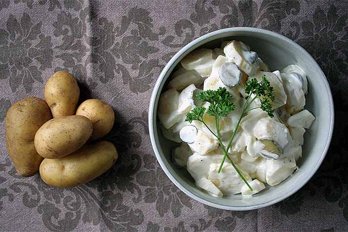 Bowl of Potato Salad with Pile of Potatoes | Foodal.com