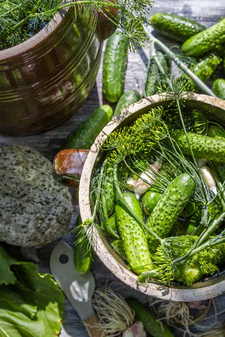 Canning Homemade Pickles | Foodal.com