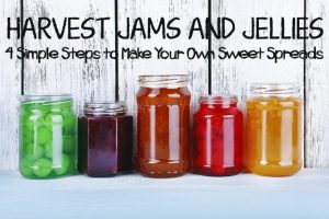 Harvest Jams and Jellies: 4 Simple Steps to Make Your Own Sweet Spreads