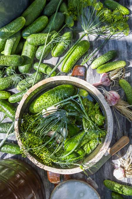 Making Pickles at Home | Foodal.com