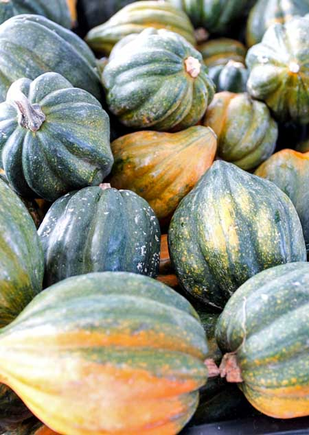 How to Cook Winter Squash - Acorn | Foodal.com