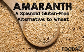 Amaranth: A Splendid Gluten-Free Alternative to Wheat | Foodal.com