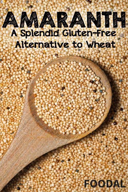 Amaranth: A Splendid Gluten-Free Alternative to Wheat   Foodal.com