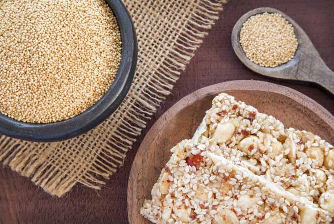 Top view of energy bars made with popped amaranth | Foodal