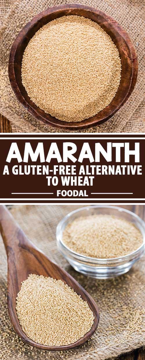 Amaranth: A Splendid Gluten-Free Alternative to Wheat