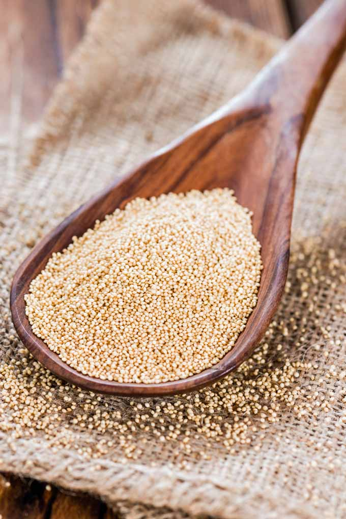 Looking for a gluten free alternative to wheat? Give ancient amaranth grain a try! Learn more at Foodal now: https://foodal.com/knowledge/paleo/amaranth-a-splendid-gluten-free-alternative-to-wheat/