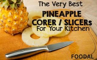 Best Rated Pineapple Corer Slicers Reviewed | Foodal.com