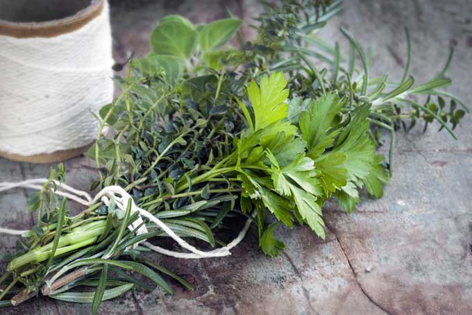Herb Bouquet Garni | Foodal.com