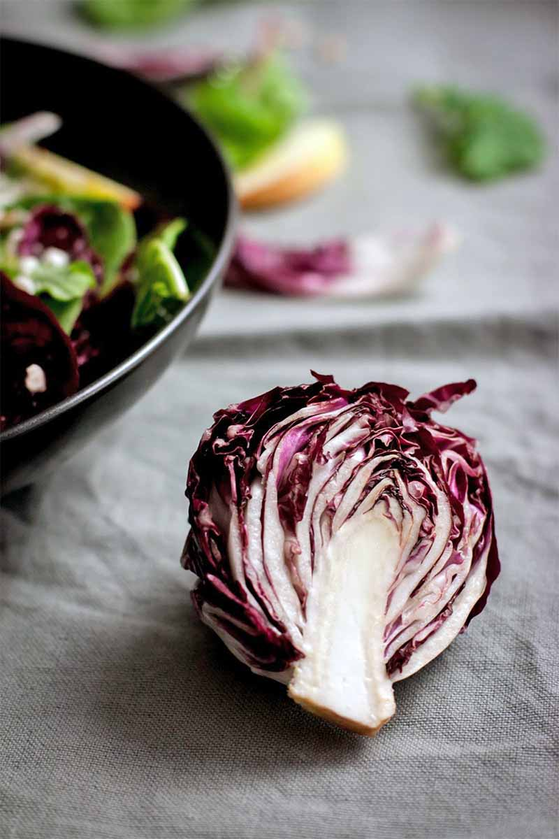 Closeup of half of a head of purple radicchio, with a black bowl of salad and scattered greens and sliced apple in shallow focus in the background, on a wrinkled gray cloth surface.