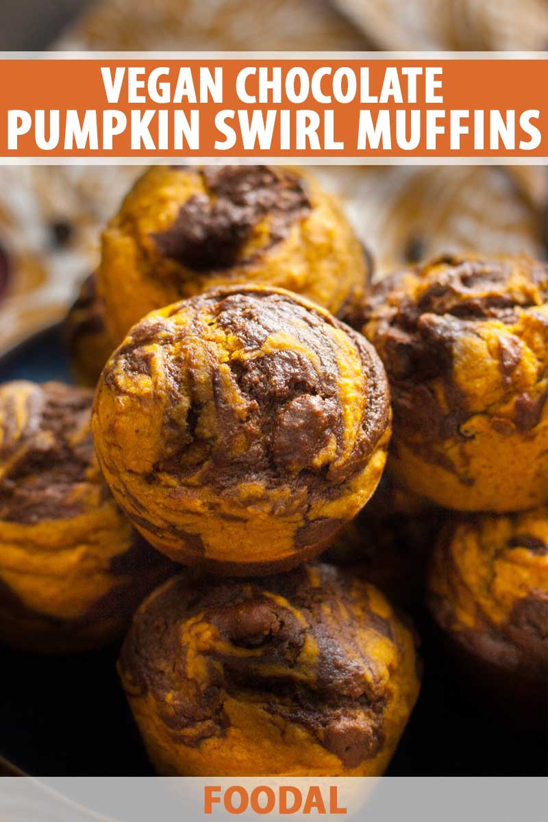 A closeup shot of a batch of vegan squash puree and chocolate swirl muffins.