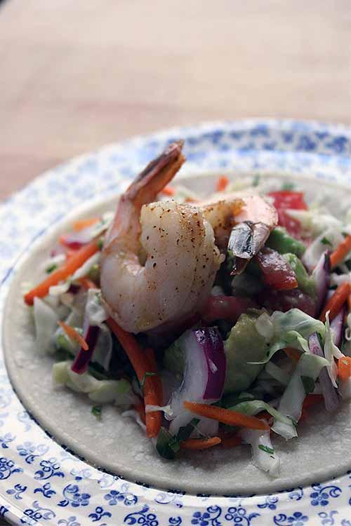 Serve seafood for your next Taco Tuesday with our special shrimp recipe: https://foodal.com/recipes/mexican-latin-america/shrimp-tacos/ 