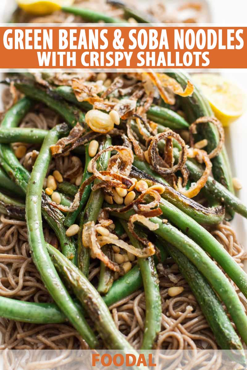 A close up of a vegan, vegetarian and gluten free side dish made with green beans, soba noodles, and shallots.