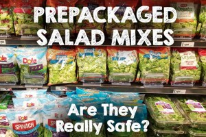 Prepackaged Salad Mixes: Are They Really Safe?