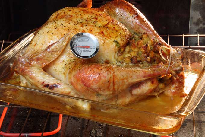 Use a meat thermometer on your Turkey   Foodal.com