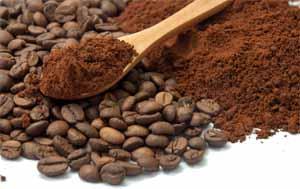 Foodal's Coffee Grinder Reviews   Foodal.com