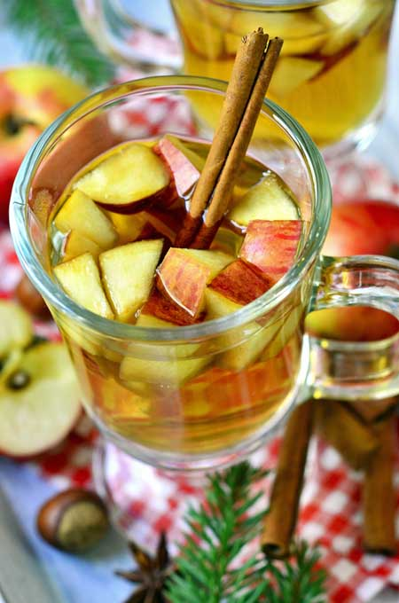 Spicy Apple Punch Recipe | Foodal.com