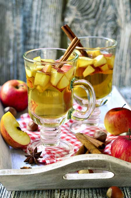 Brandy-Apple Punch Recipes — Dishmaps