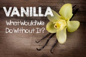 Vanilla: What Would We Do Without It?