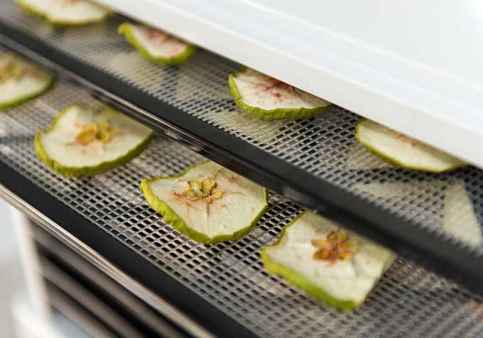 Dehydrator filled with green apple slices | Foodal.com