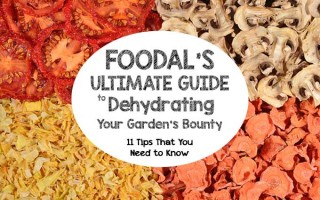 Foodal's Ultimate Guide to Dehydrating Your Garden's Bounty - Cover