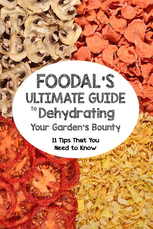 Foodal's Ultimate Guide to Dehydrating Your Garden's Bounty | Foodal.com