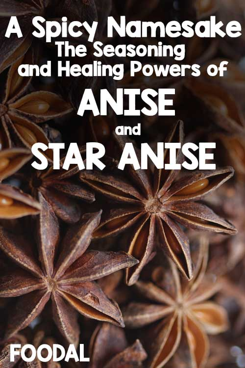 A Spicy Namesake - The Seasoning and Healing Powers of Anise And Star Anise | Foodal.com