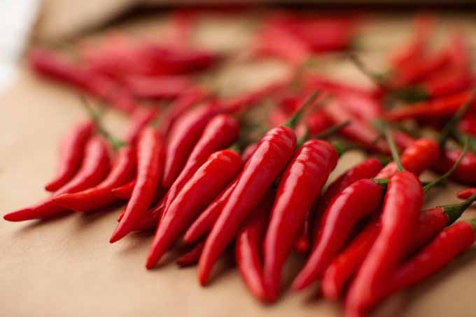 Capsaicin in hot peppers helps with intestinal ulcers, heartburn and for easing joint and muscle pain | Foodal.com