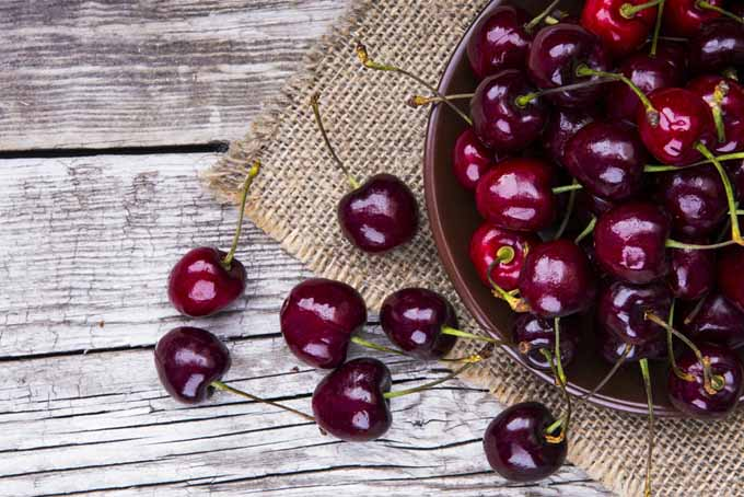 Cherries may reduce irritation and inflammation | Foodal.com