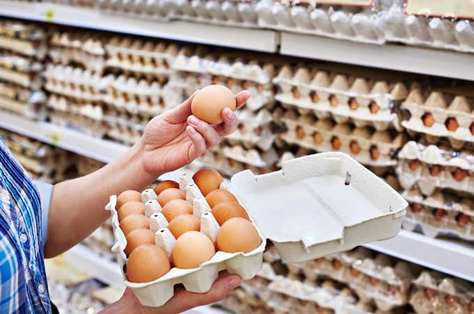 Egg Carton Labeling: Cracking the Code | Foodal.com