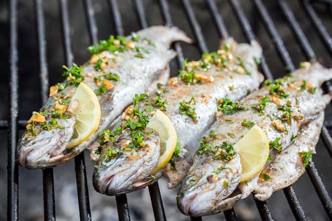 Grilling Trout | Foodal.com