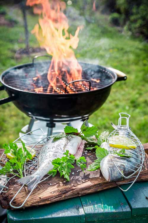 7 Simple Ways to Cook Perfect Fish Every Time - Method 5 (Grilling) | Foodal.com