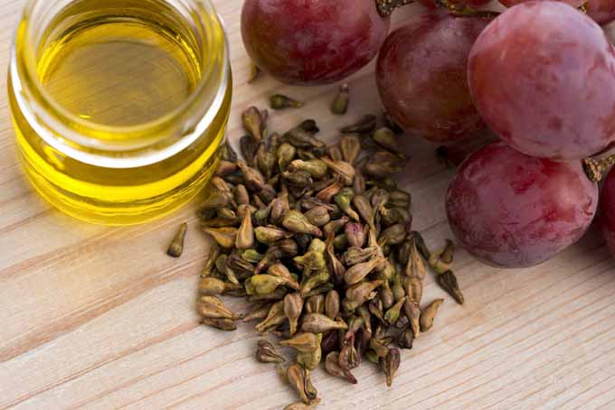 The culinary uses of grapeseed oil | Foodal.com
