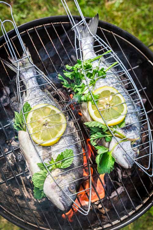7 Simple Ways to Cook Perfect Fish Every Time - Method 5 (on the Barbecue) | Foodal.com