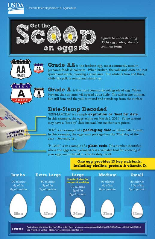 "USDA's ""Get the Scoop on Eggs"" 