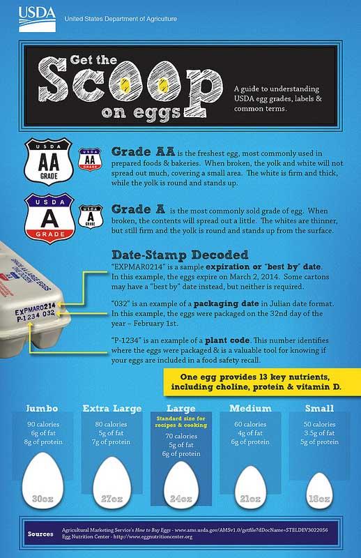 Egg carton code dating