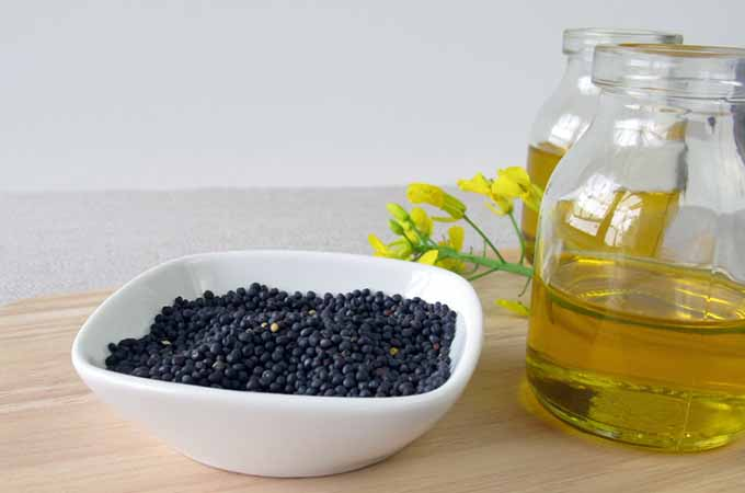 canola oil with seeds and flower | Foodal.com