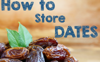 Storing Dates | Foodal.com