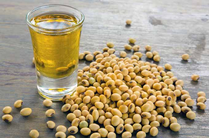 soy oil and dried beans | Foodal.com