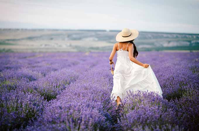 Woman in a Field of Lavender | Foodal.com