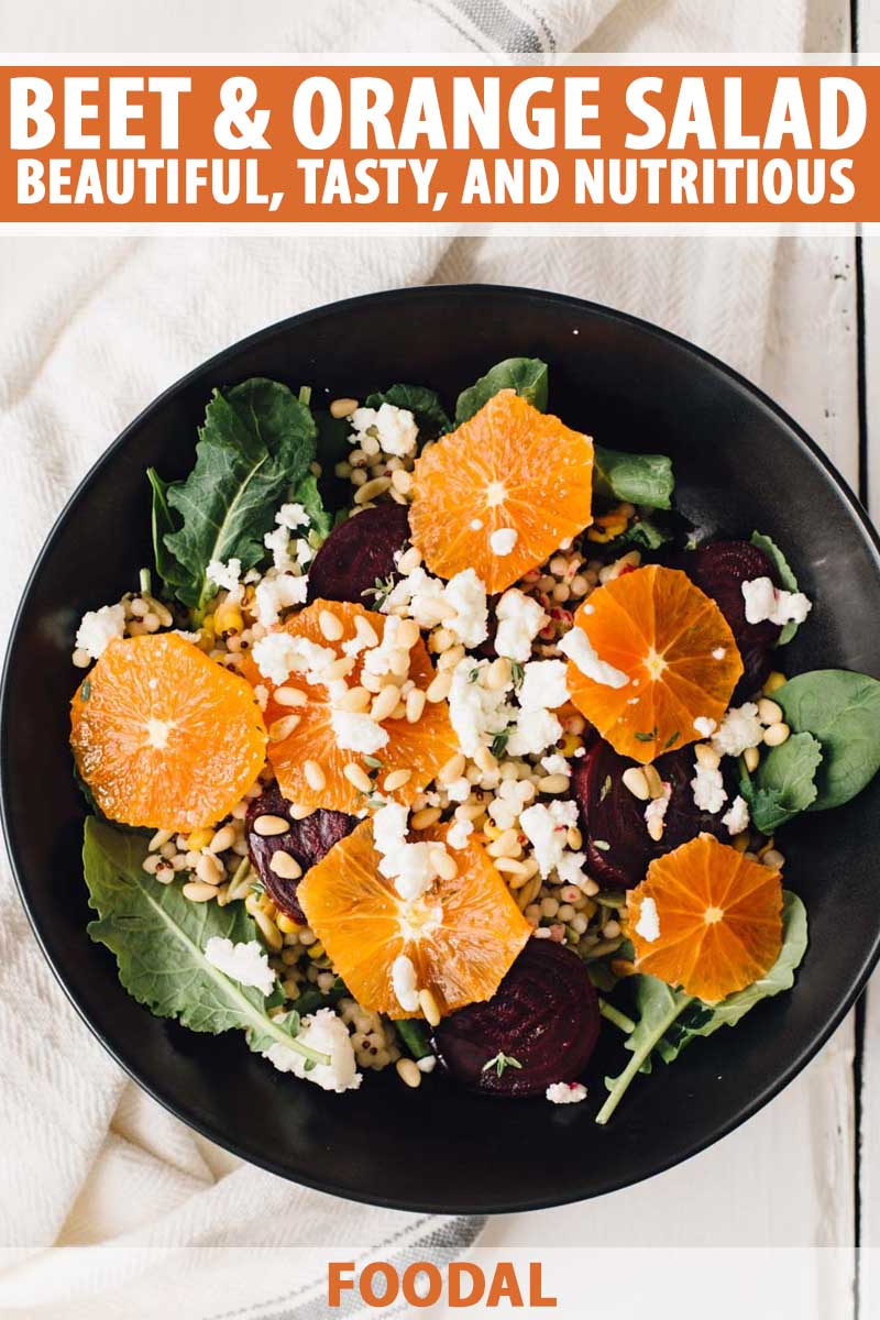 Top down view of a black ceramic plate full of a salad made with beets, oranges, couscous, baby spinach, and goat cheese.