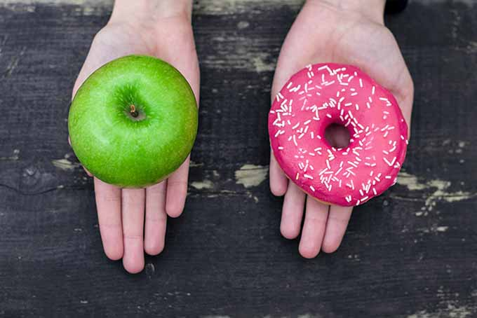 Apple or Donut? | Foodal.com