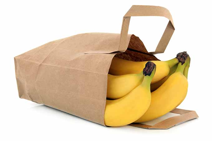 Ripen Bananas in a Paper Bag | Foodal.com