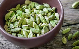 Cardamom: The Health and Culinary Uses of This Exotic Spice
